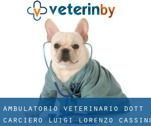 Ambulatorio Veterinario Dott. Carciero Luigi Lorenzo Cassino