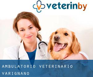 Ambulatorio Veterinario Varignano