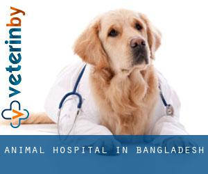 Animal Hospital in Bangladesh