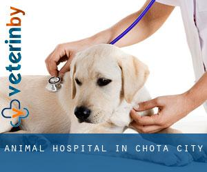 Animal Hospital in Chota (City)