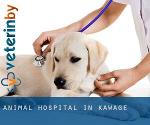 Animal Hospital in Kawage