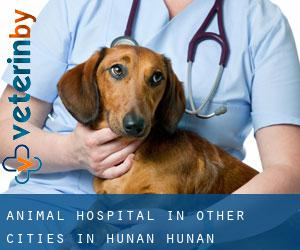 Animal Hospital in Other Cities in Hunan (Hunan)