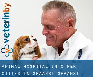 Animal Hospital in Other Cities in Shaanxi (Shaanxi)