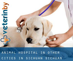 Animal Hospital in Other Cities in Sichuan (Sichuan)