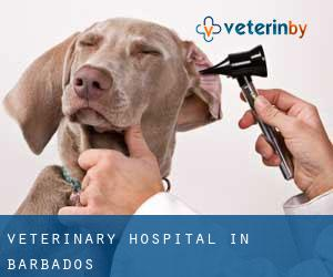 Veterinary Hospital in Barbados