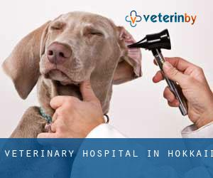 Veterinary Hospital in Hokkaidō