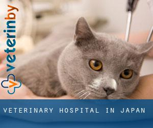 Veterinary Hospital in Japan