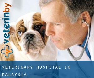 Veterinary Hospital in Malaysia