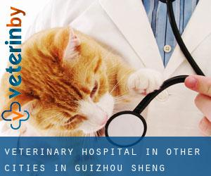 Veterinary Hospital in Other Cities in Guizhou Sheng (Guizhou Sheng)