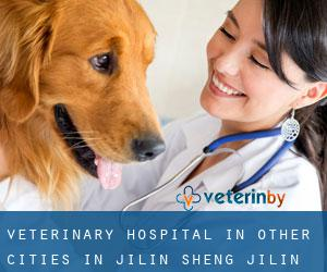 Veterinary Hospital in Other Cities in Jilin Sheng (Jilin Sheng)