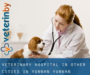 Veterinary Hospital in Other Cities in Yunnan (Yunnan)