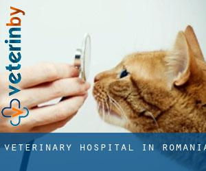 Veterinary Hospital in Romania