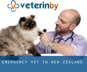 Emergency Vet in New Zealand