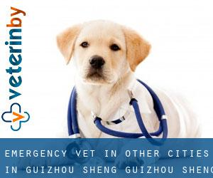 Emergency Vet in Other Cities in Guizhou Sheng (Guizhou Sheng)