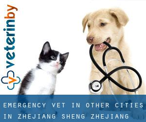 Emergency Vet in Other Cities in Zhejiang Sheng (Zhejiang Sheng)