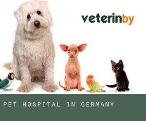 Pet Hospital in Germany