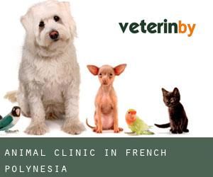 Animal Clinic in French Polynesia