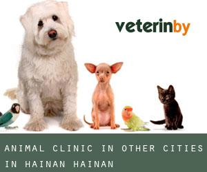 Animal Clinic in Other Cities in Hainan (Hainan)