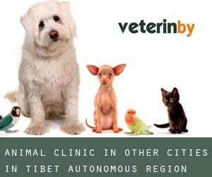Animal Clinic in Other Cities in Tibet Autonomous Region (Tibet Autonomous Region)