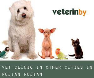 Vet Clinic in Other Cities in Fujian (Fujian)