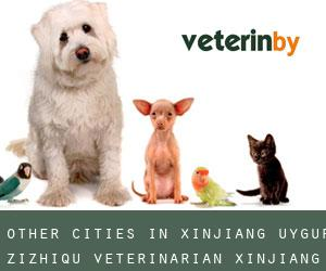 Other cities in Xinjiang Uygur Zizhiqu Veterinarian (Xinjiang Uygur Zizhiqu)