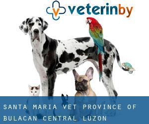 Santa Maria vet - Province of Bulacan - Central Luzon ...
