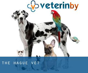 The Hague Vet